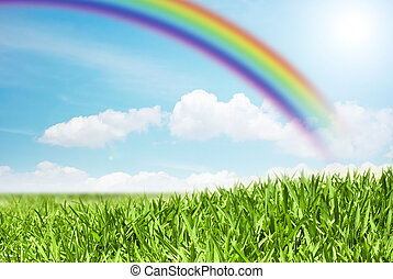 green field on rainbow background - view of a green field on...