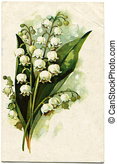 vuntage postcard - Lilies of the Valley - picture artist A...