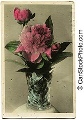 vuntage postcard - Peonies - hand-painted with aniline dyes...