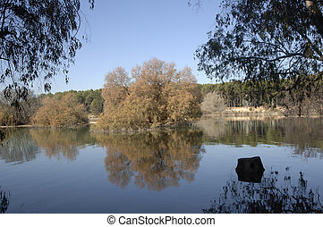 Cubillas swamp view, in the province of Granada