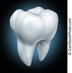 歯医者の, 歯, 健康, シンボル