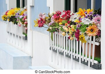 Flowers on Window - Photograph of flowers on a windowsill