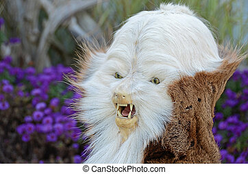 Taxidermy creation - Strange creature created by a...