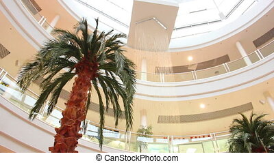 palm in store