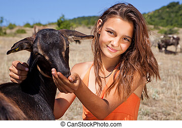 Goat feeding - Young cattle girl feeding goats in the...