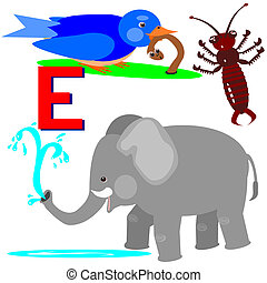 E earwig, early bird, elephant - Illustration of animals...