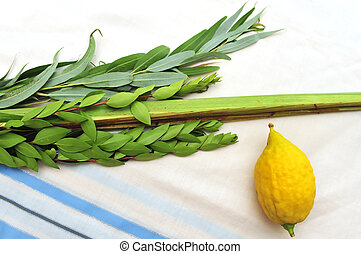 Four Species for Jewish Holiday Sukkoth - The Four Species -...