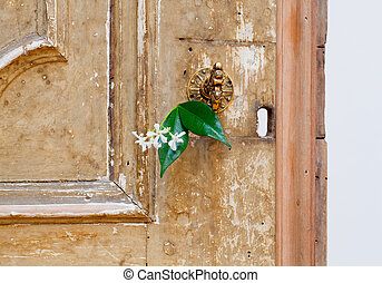 Jasmine flower inside an old door lock