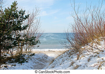 Baltic Sea in the winter - The beach on the Baltic Sea in...
