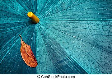 Umbrella and yellow leaf - Wet umbrella and dry yellow leaf