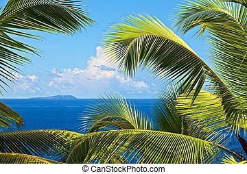 tropical melody - Dream seascape view, Seychelles, La Digue...