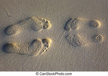 footprints - Footprints on the sandy coral beach