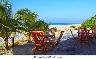 Bar is on a tropical beach