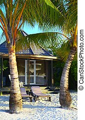 Tropical bungalow is on the beach