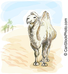 Camel Bactrian. Watercolor style. Vector illustration.