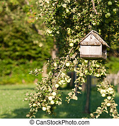 Bird tablefeeder suspended from a tree in a country orchard...
