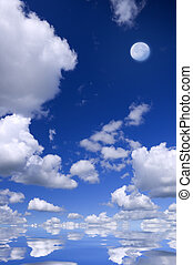 Moon on the blue . Nature composition.