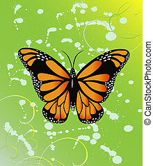 Butterfly on the spotted background