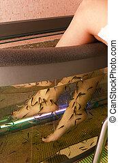 Fish spa pedicure