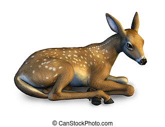 Fawn at Rest - 3D render.