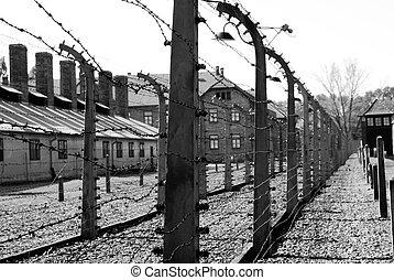 libertad, prisión