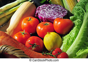 Variety of Fresh Vegetables - A variety of different...
