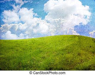 fresh spring field