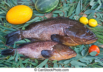 Groupers on a bed of leaves and fruits