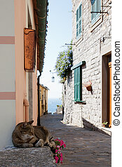 Portovenere - small street in Portovenere , village in Italy