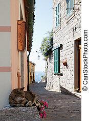 Portovenere - small street in Portovenere , village in Italy