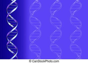 ADN, fundo