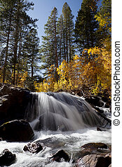 Autumn Mountain Waterfall - Orange leaves, waterfall,...