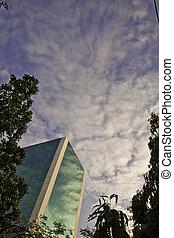 Green sky scrapper - The cityscape of modern sky scrapper...