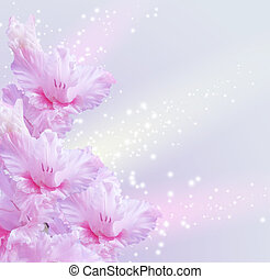 Gladiolus - Card with gladiolus and sparkling stars
