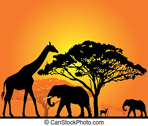 African animals - black silhouettes of African animals in...