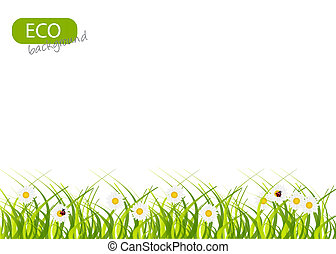 Spring green background. Grass and flower.