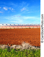 Agriculture landscape - Red acriculture field with blue sky...