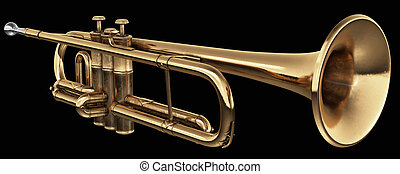 cornet on black - brass cornet at slight angle on black...