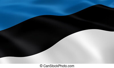 Estonian flag in the wind. Part of a series.
