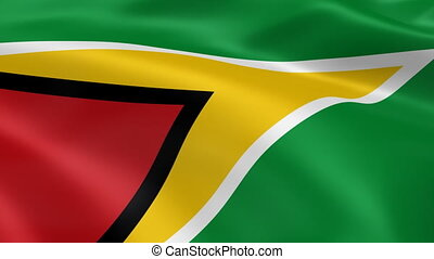Guyanese flag in the wind Part of a series