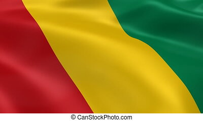 Guinean flag in the wind. Part of a series.