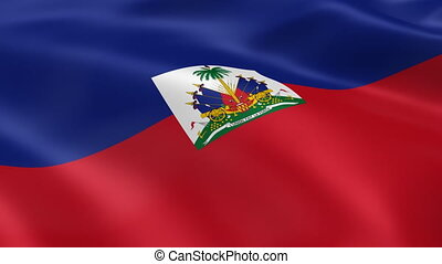Haitian flag in the wind Part of a series