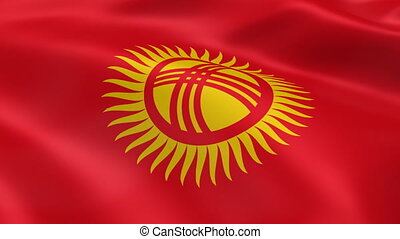 Kyrgyzstan flag in the wind - Kyrgyzstani flag in the wind...