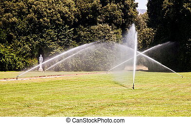 luxo, garden:, irrigação