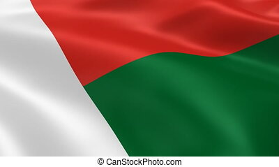 Malagasy flag in the wind