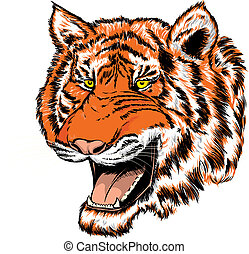 Tiger head - Vector illustration of a tiger head