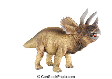 Triceratops isolated on white background