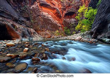 Zion Canyon Narrows - Virgin River cascades in the The...