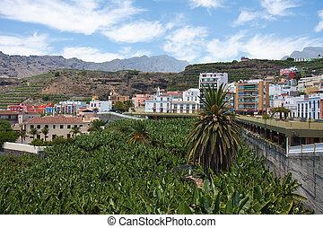 Banana Plantation near Tazacorte, La Palma, Canary Islands