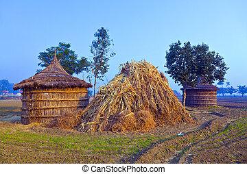 hut of farmer in morning fog - hut of farmer in fields in...